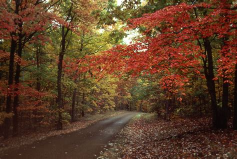 autumn color fall colors natchez trace parkway u s national park