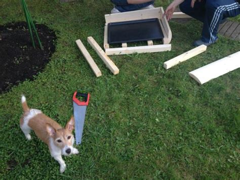 how to build a dog house from scratch hand made