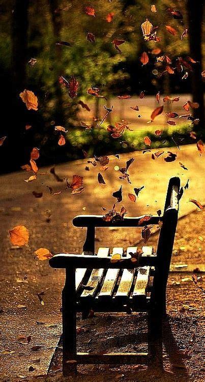 decoracion otoño infantil m 225 s de 25 ideas incre 237 bles sobre oto 241 o en pinterest