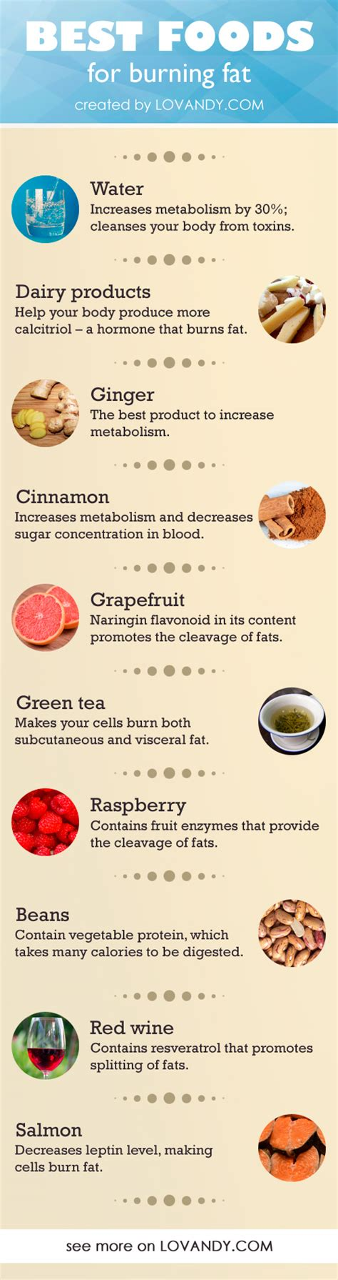 Burning Foods by List Of Foods That Boost Metabolism And Burn Foodfash Co
