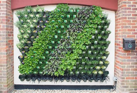 living wall aylett nurseries