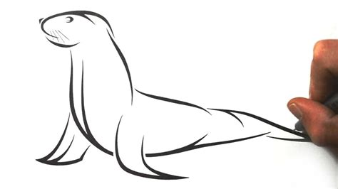 how to draw a cartoon california sea lion clipart best