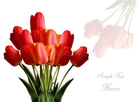 auguri con fiori fiori x auguri za94 pineglen