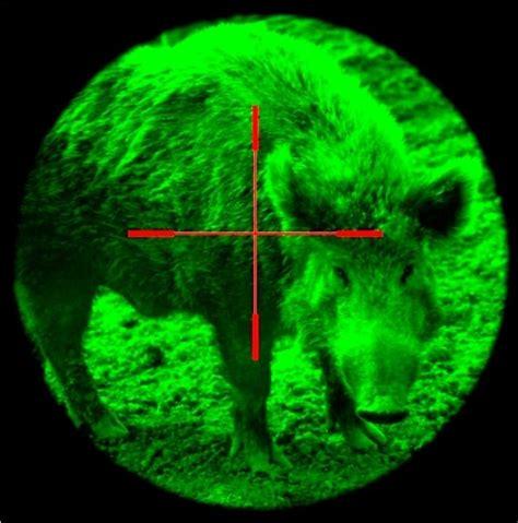 best hog hunting lights feederleglights led hog hunting deer feeder hog light pdf