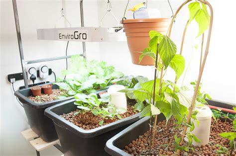 grow bed aquaponics system experiments in aquaponics