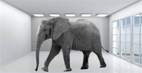 The In elephant in the room cybersecurity challenges part 1