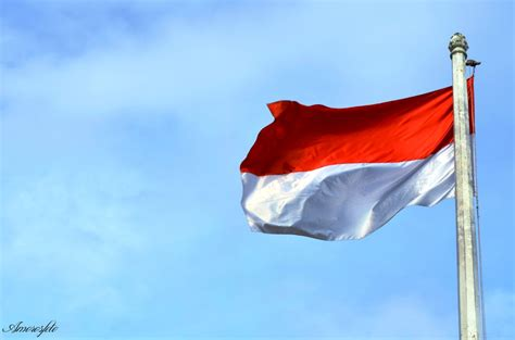 Pin Bendera Indonesia Coran 1 merah putih berkibar www imgkid the image kid has it