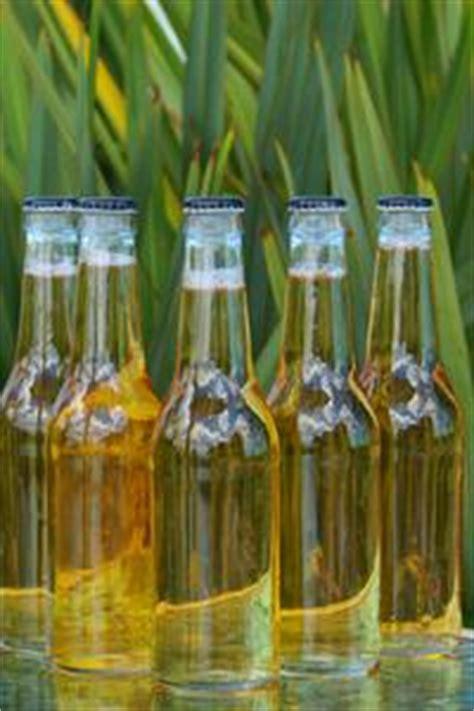 alimenti contengono lievito elenco degli alimenti con il lievito di birra