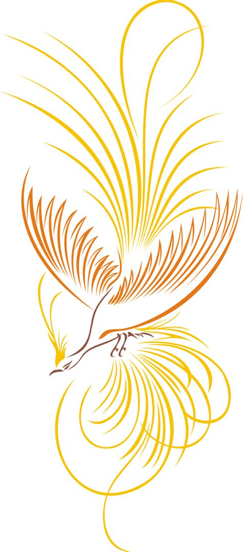 gambar burung cendrawasih vektor kumpulan logo