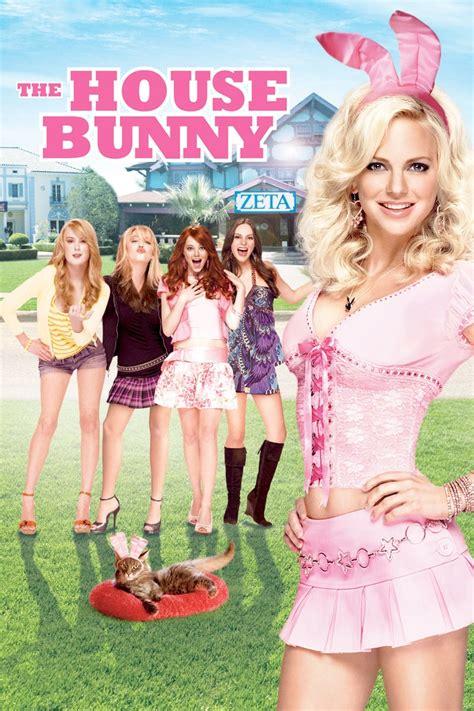 la coniglietta di casa la coniglietta di casa 2008 cinema it