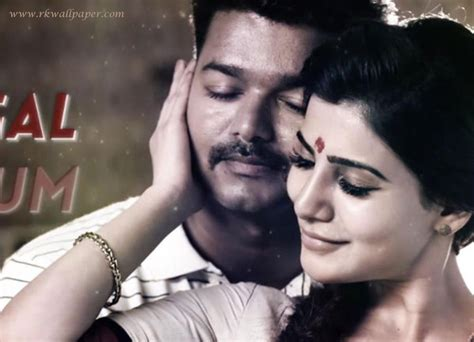 theri latest hd images wallpapers pictures vijay samantha amy theri movie vijay samantha wallpapers quotes and wallpapers