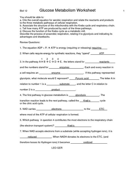 E Bio Worksheet Answers by Uncategorized Biology Worksheet Klimttreeoflife Resume Site