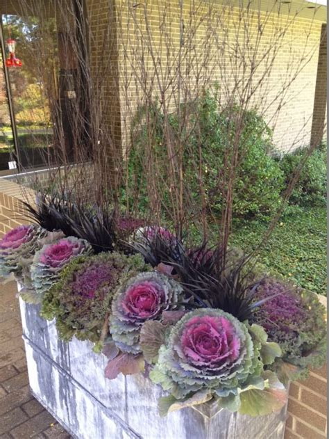 8 tips for fall and winter container gardening fabulous fall containers the garden glove