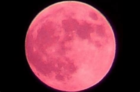 straberry moon once in a generation strawberry moon tonight newport buzz