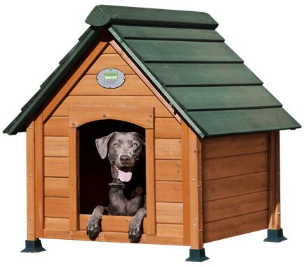 all about dog houses diy dog house plans for all skill levels