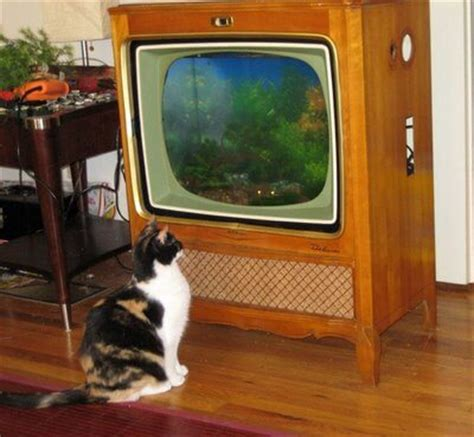 Tv Aquarium 5 reinvented uses for tvs homejelly