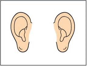 best ear clipart 694 clipartion
