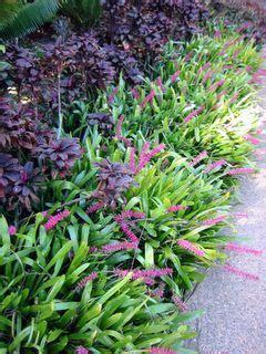 NZLANDSCAPES. Landscape Design Blog. New Zealand. NZ