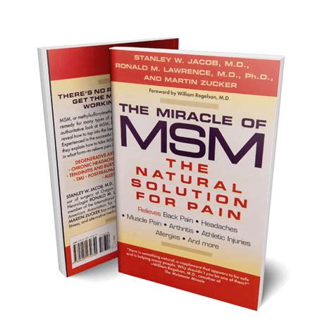 The Miracle Of Msm Book Mismo
