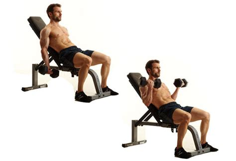 dumbbell bicep curl incline bench gain biceps and triceps mass with these 12 exercises and