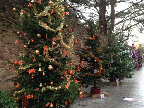 charity christmas tree festival set to light up