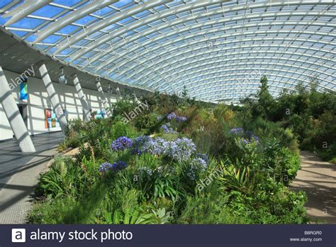 the national botanic garden of wales the great glasshouse national botanic garden of wales