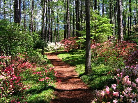 Callway Gardens happy easter from s callaway gardens best