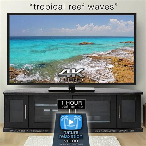 4k still quot tropical reef waves quot cancun 1 hr still 4k nature