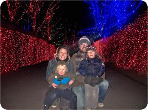 pdx zoo lights in portland zoo lights stay at home pdx