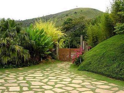 El Camino Patio by Piedras Cuidado De Plantas