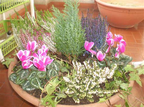 vasi per composizioni floreali le mie composizioni floreali in vaso trapiantefiori