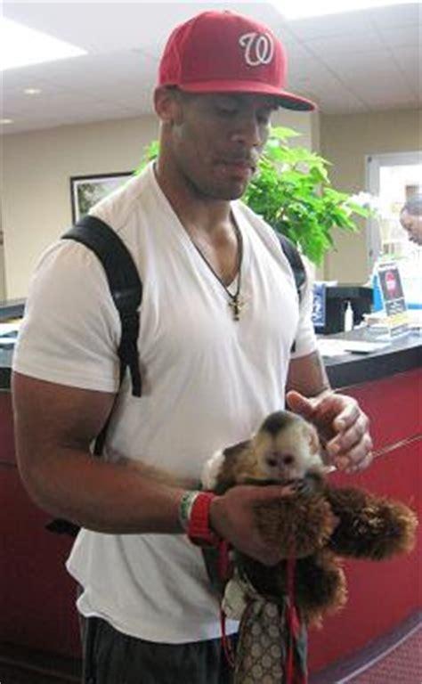 Skins Safety LaRon Landry Keeps His Monkey in the Gucci ... Laron Landry Redskins
