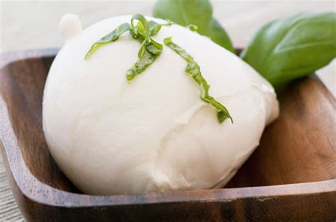 Handmade Mozzarella - make cheese at home mozzarella recipe cook