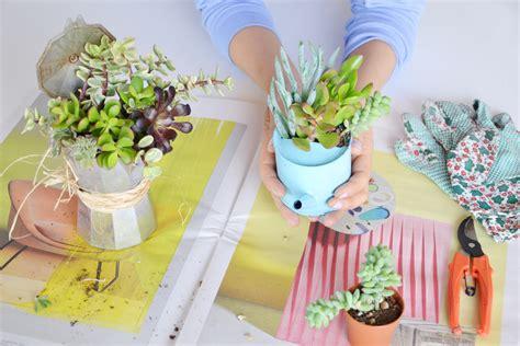 vasi per piante grasse riciclo creativo come trasformare vecchi contenitori in