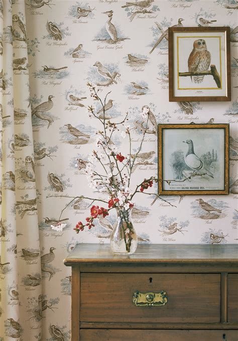 bird wallpaper for walls bird wallpaper for walls vintage hd wallpapers blog