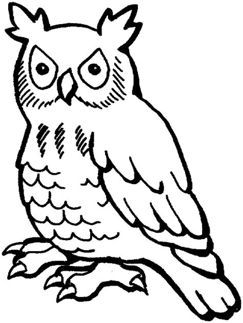 owl eyes coloring pages stylized line drawing owl art inspiration for abs