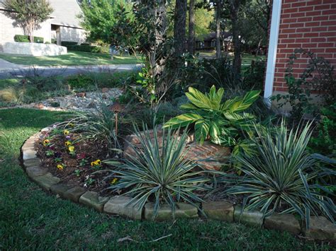 landscaping ideas fort worth tx low water