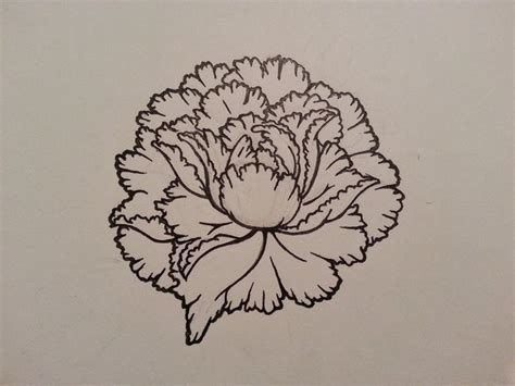 22 best flower outline tattoo images on pinterest flower