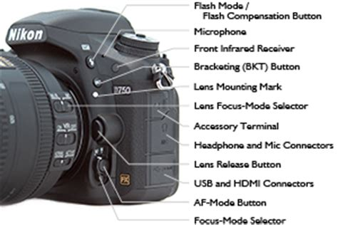 Nikon D750 Experience The Clear And Helpful User S Guide