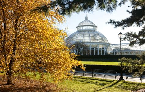 New York Botanical Garden Membership Curbed Gift Guide 15 New York City Themed Presents Curbed Ny