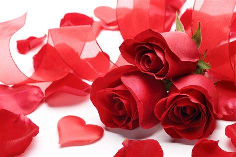 Fleur St Valentin by Fonds D 233 Cran St Valentin Fleur Maximumwall