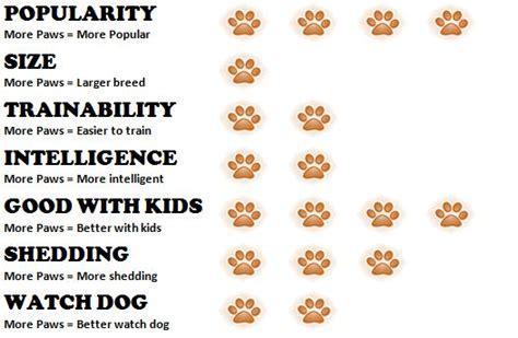 bulldog puppy weight chart bulldog weight chart breeds picture