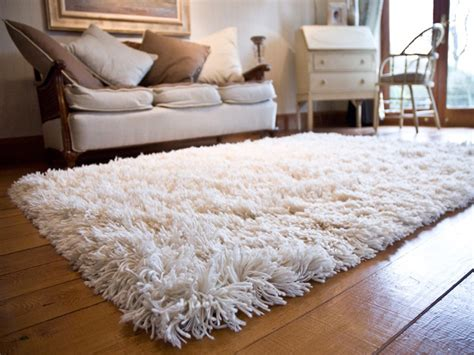 carpet and rug cleaning brisbane maxigard photo gallery cleaning services brisbane