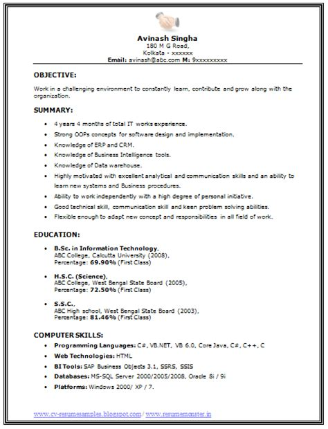 Bsc Resume 10000 Cv And Resume Sles With Free Bsc It Resume Sle