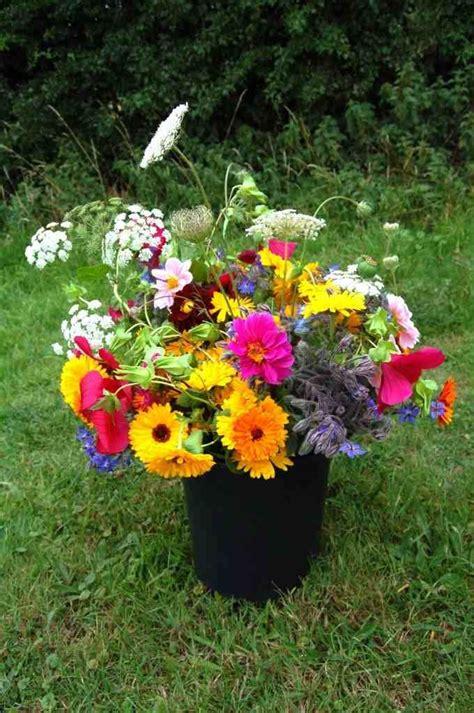 Cut Flower Gardens Best Cut Perennial Flowers Cutting Garden Top 50 Cut Flowers Garden Gardens