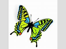 Butterfly Net Clipart Free Clipart Downloads Butterflies