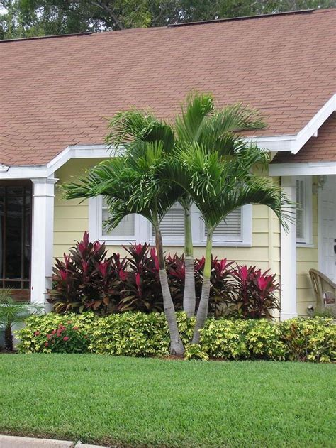 Florida Gardening Ideas 25 Best Ideas About Florida Landscaping On Pinterest Green Names Front Yards And Front