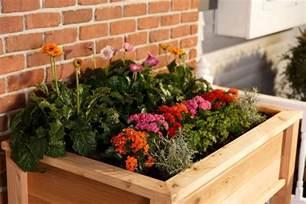 elevated garden planter boxes yardcraft
