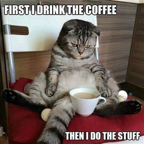 Need Coffee Meme - 45 funny coffee memes that will have you laughing hot
