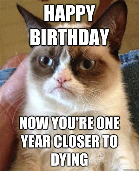 Grumpy Cat Meme Happy - happy birthday kitten meme